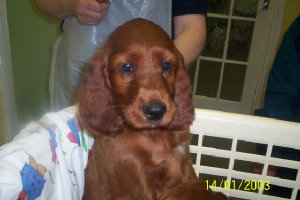 One of our patients